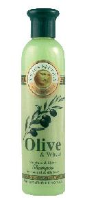 Olive Oil Products - Olive and Wheat Shampoo