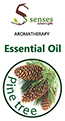 5 senses Spa Products - Pine tree Essential Oil-10ml