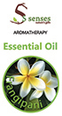 5 senses Spa Products - Frangipani Essential Oil-10ml